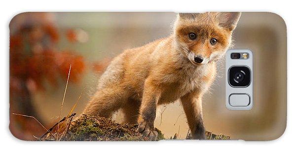 Furry Galaxy S8 Case - Fox by Robert Adamec