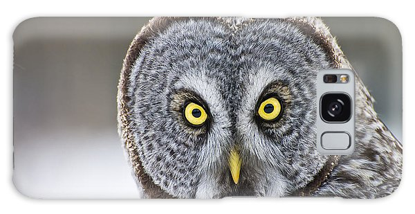 Great Gray Owl Portrait Galaxy Case