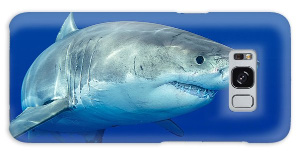 Great White Shark Galaxy Case