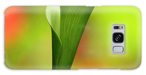 Galaxy Case featuring the photograph Green Calla Lily by Heiko Koehrer-Wagner