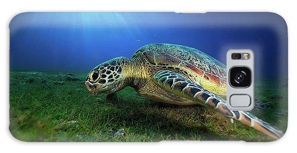 Turtle Galaxy Case - Green Turtle by Barathieu Gabriel