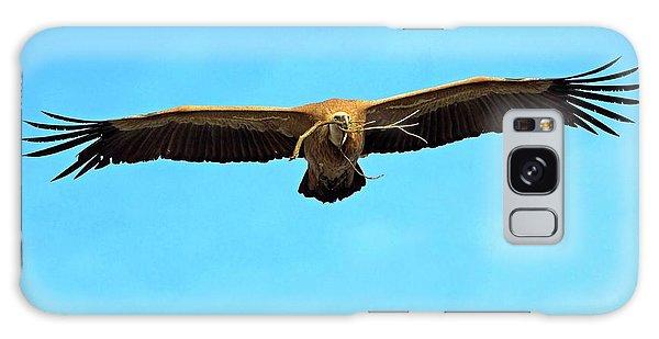 Griffon Vulture In Flight Galaxy Case