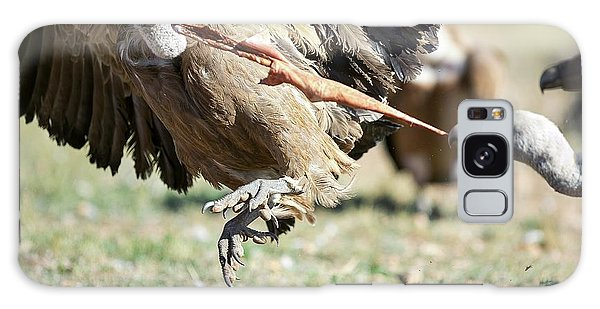 Griffon Vultures Feeding Galaxy Case