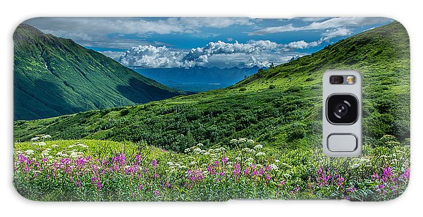 Hatcher's Pass Galaxy Case by Andrew Matwijec