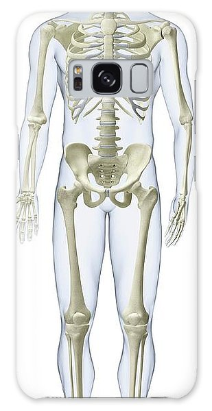 Anatomical Model Galaxy Case - Human Skeleton by Dorling Kindersley/uig