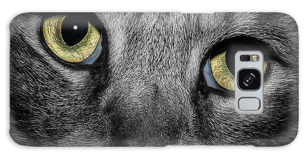 In A Cats Eye Galaxy Case