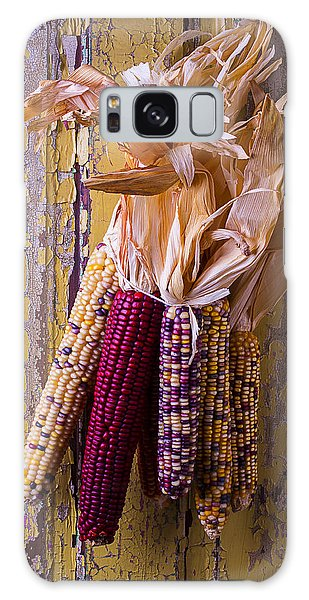 Indian Corn Galaxy Case - Indian Corn by Garry Gay