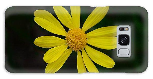 Isolated Daisy Galaxy Case by Debra Martz