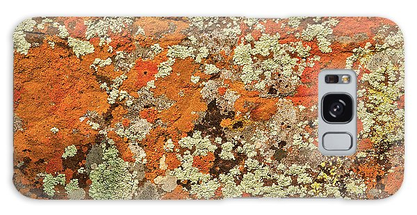 Galaxy Case featuring the photograph Lichen Abstract by Mae Wertz