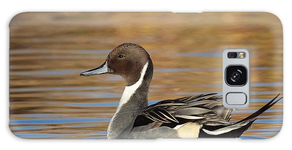 Male Pintail Galaxy Case by Ruth Jolly