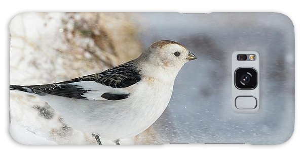 Cairngorms National Park Galaxy Case - Male Snow Bunting by Duncan Shaw