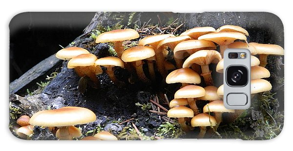 Mushrooms On A Stump Galaxy Case by Chalet Roome-Rigdon