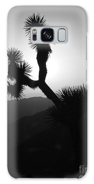 New Photographic Art Print For Sale Joshua Tree At Sunset Black And White Galaxy Case