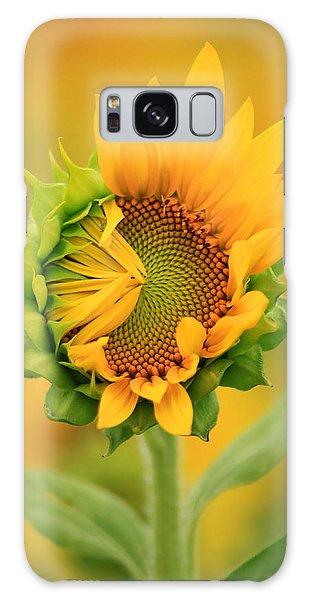 Opening Sunflower Galaxy Case