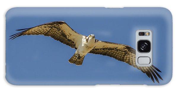 Osprey In Flight Spreading His Wings Galaxy Case by Dale Powell