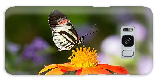 Piano Key Butterfly Galaxy Case
