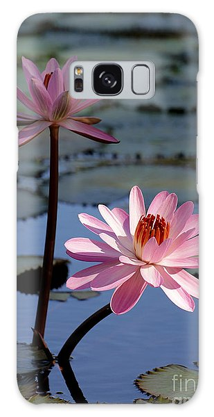 Pink Water Lily In The Spotlight Galaxy Case