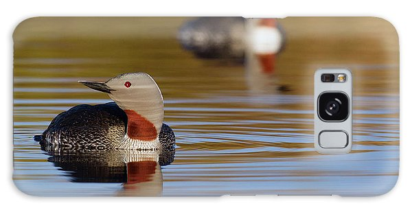 Loon Galaxy S8 Case - Red-throated Loon Pair by Ken Archer