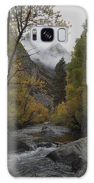 Rush Creek Aspen Trees Aerie Crag Galaxy Case
