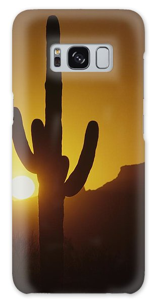 Saguaro Cactus And Sunset Galaxy Case
