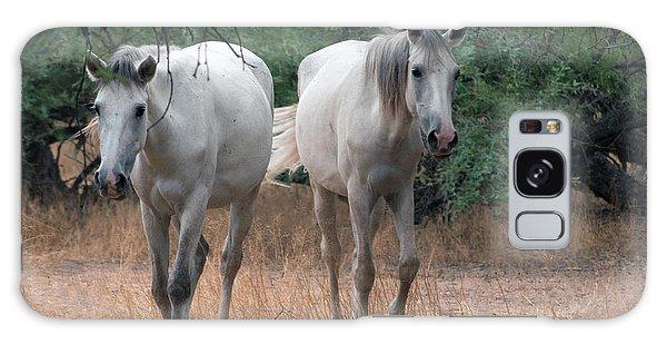 Salt River Wild Horse Galaxy Case