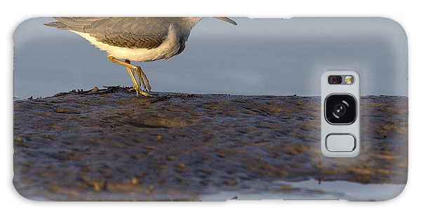 Spotted Sandpiper Reflection Galaxy Case