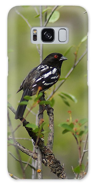 Spotted Towhee Galaxy Case
