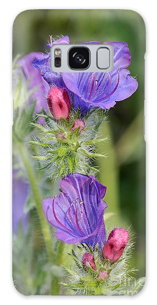 Spring Wild Flower Galaxy Case by George Atsametakis