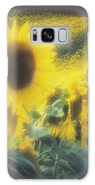 Helianthus Annuus Galaxy Case - Sunflower Field by David Nunuk/science Photo Library