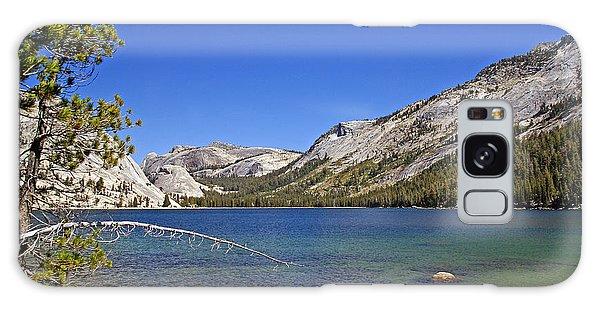 Tenaya Lake Galaxy Case