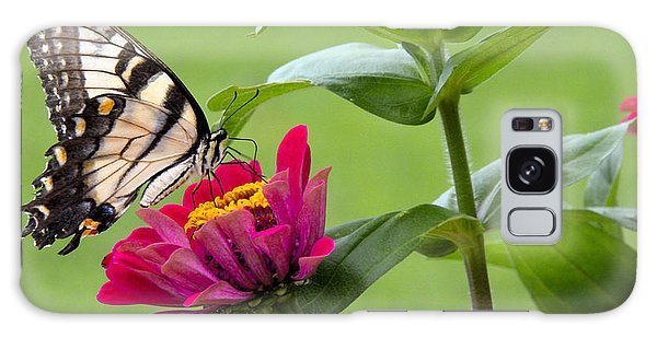Galaxy Case - Tiger Swallowtail Butterfly On Zinnia by A Gurmankin