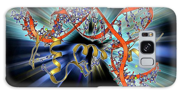 Synthesis Galaxy Case - Transcription Factor And Ribosomal Rna by Laguna Design