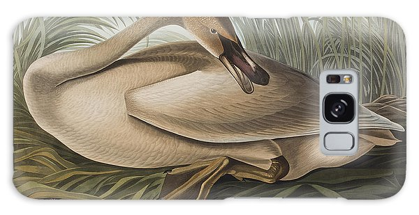 Trumpeter Swan Galaxy S8 Case