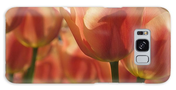 Tulips In Spring Galaxy Case
