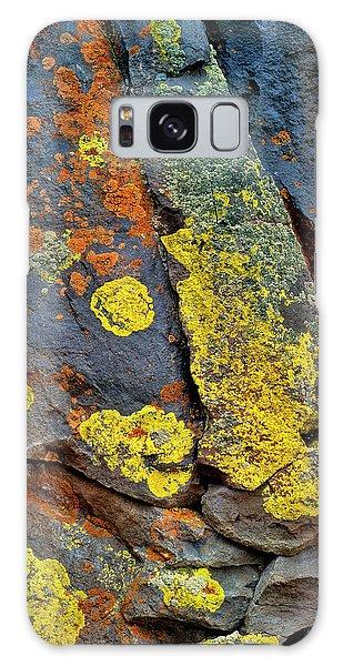 Basalt Galaxy Case - Usa, Oregon, Deschutes National Forest by Jaynes Gallery