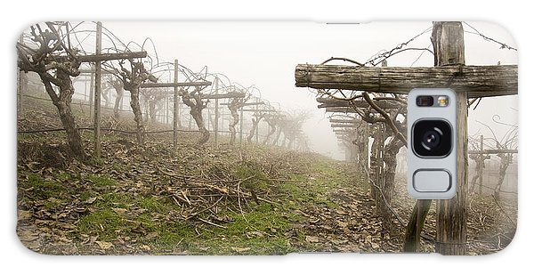 Vineyard In The Fog Galaxy Case