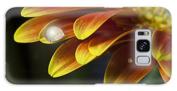 Waterdrop On A Gerbera Daisy Petal Galaxy Case
