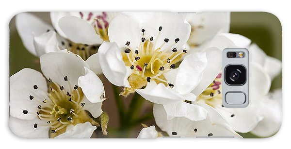Beautiful White Spring Blossom Galaxy Case