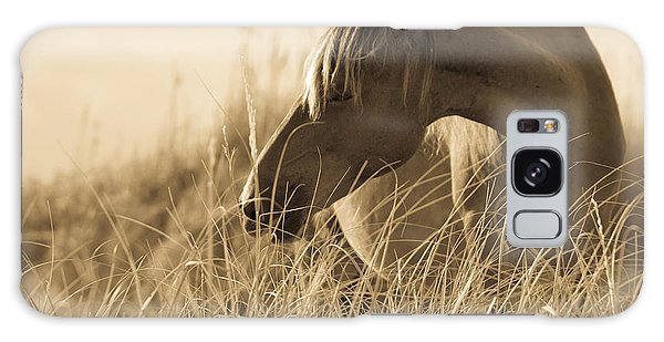 Wild Horse On The Beach Galaxy Case