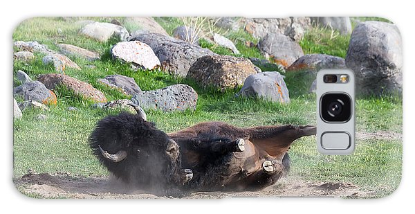 Yellowstone Bison Galaxy Case