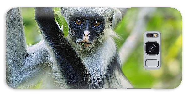 Galaxy Case featuring the photograph Zanzibar Red Colobus In Tree Jozani by Thomas Marent