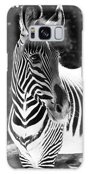 Zebra Portrait Galaxy Case