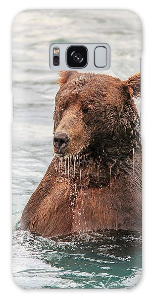 Grizzly Bears Galaxy Case - Grizzly Bears Also Called Brown Bears by Tom Norring