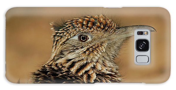 Greater Roadrunner Galaxy Case - Usa, New Mexico, Bosque Del Apache by Jaynes Gallery