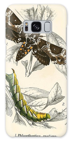 Insect Galaxy Case - Butterflies by English School