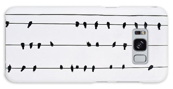 29 Pigeons Galaxy Case