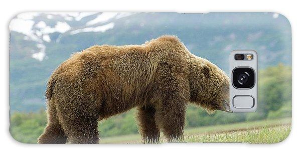 Alaska Wilderness Galaxy Case