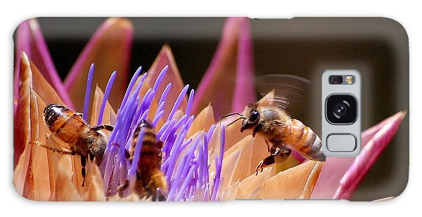 Bees In The Artichoke Galaxy Case