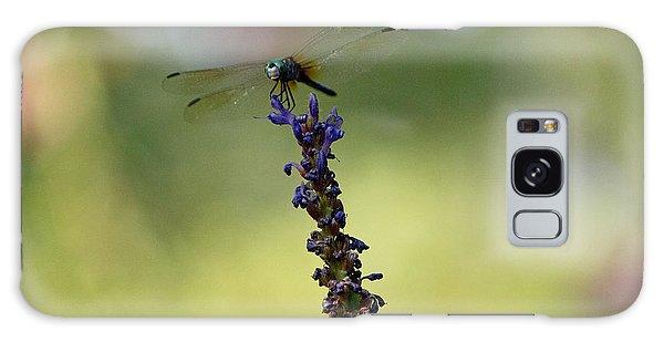 Blue Dragonfly Galaxy Case