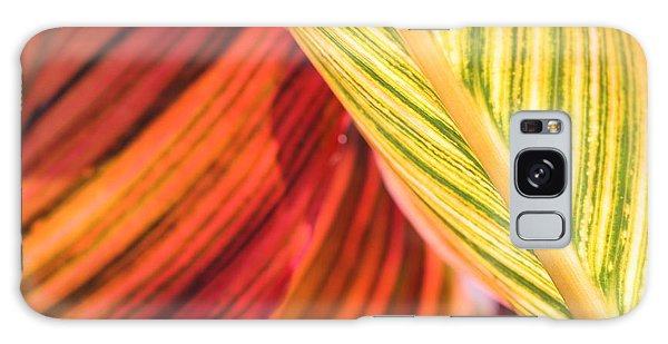 Galaxy Case - Canna Lily Named Durban by J McCombie